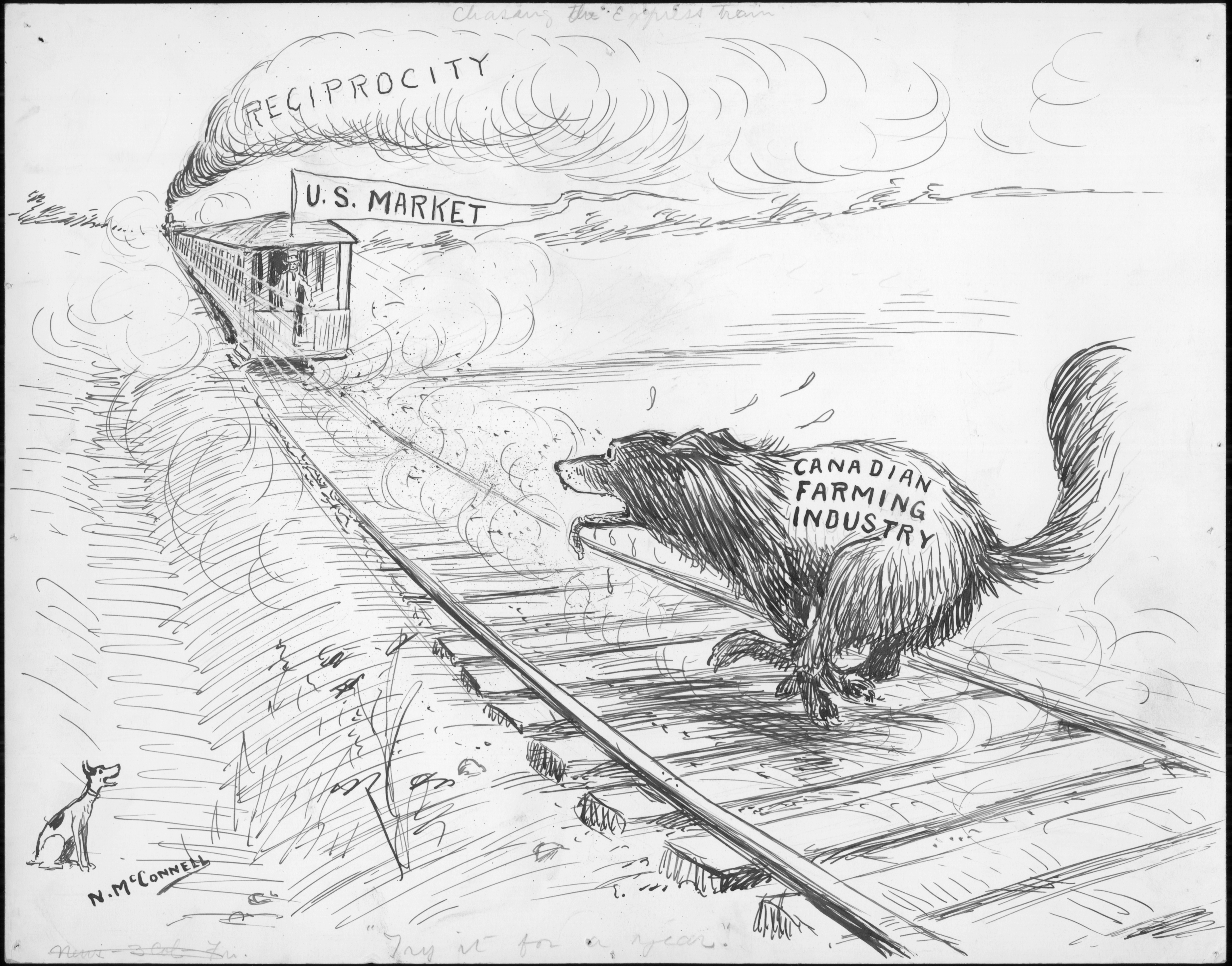 """Drawing of a train being chased by a beaver. In the top left half of the cartoon there is a train that is receding into the distance. The word """"RECIPROCITY"""" is written into the smoke from the locomotive. A banner with the words """"U.S. MARKET"""" is being waived by an indistinct figure at the back of the train. The train rails run diagonally towards the bottom right of the drawing and off page. A beaver is running on the rails on the bottom right part of the cartoon. The beaver's mouth is agape and sweat drops are visible around the beaver's head. On the bottom left, a small do is watching the scene. The caption written in cursive at the bottom of the cartoon reads """"""""TRY IT FOR A YEAR."""" NEWTON MCCONNELL. CIRCA 1911."""""""